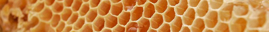 Imkerei Merkens - Eine kleine Honigkunde